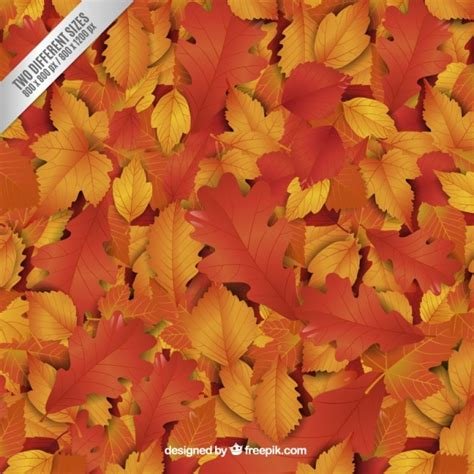 hojas de otono en vectores  descargar gratis jumabu