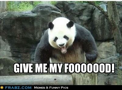Drunk Panda Meme - drunk panda meme 28 images drunk panda memes quickmeme what the f ck is going on drunk
