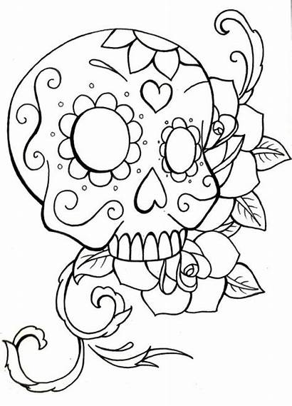 Skull Coloring Sugar Pages Roses Drawing Simple