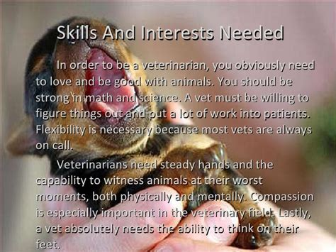 Veterinarian Emily M. Creative Writing Schools Online. Getting Rid Of Cable Tv Small Bussiness Loans. Animation Schools In New York. How To Backup Large Amounts Of Data. California Insurance Agency Sbs 2011 Backup. Disability Attorney Michigan. Commercial Business Loan Reverse Mortgage Age. Xfinity Home Security Cost Unh Library Hours