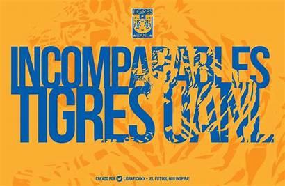 Tigres Imagenes Fondo Uanl Pantalla Tigre