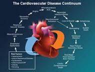 health about cardiovascular disease about cardiovascular disease ... Cardiovascular Diseases And Disorders