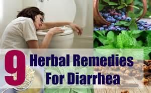 home remedies for diarrhea in 9 herbal remedies for diarrhea how to treat diarrhea