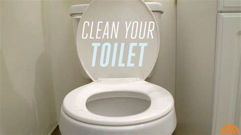 clean  toilet todaycom