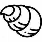 Shell Flaticon Icons Icon Sea Relaxation Nautilus