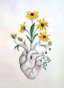 Drawing Flower Heart Anatomy
