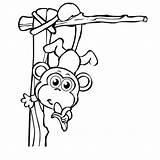 Coloring Monkey Printables Boy sketch template