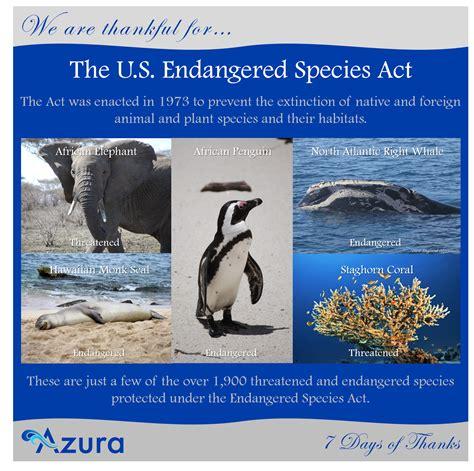 the endangered species act under shop vimaxpurbalingga
