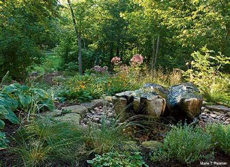 Backyard Habitat - backyard habitat dollars and sense in your yard