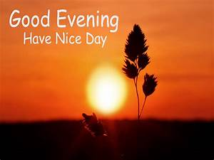 Have A Great Evening Quotes QuotesGram