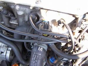 Fuite Liquide Refroidissement : fuite liquide de refroidissement golf 3 1 8l essence 1993 ~ Gottalentnigeria.com Avis de Voitures