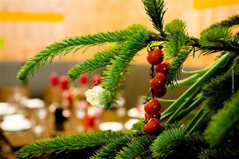 weihnachtsbaum einfach online bestellen erfahrungsbericht
