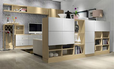 Living Room Cabinet Design Software  Download 3d House