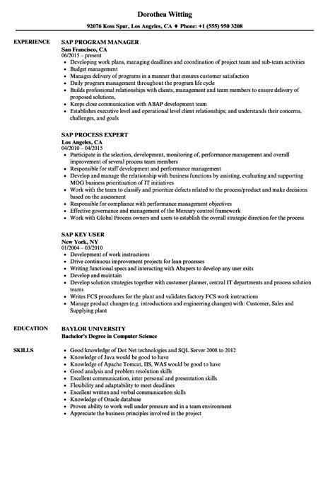 experience resume format for sap sap resume sles velvet