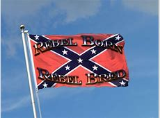 Buy USA Southern United States Rebel Born Rebel Bred Flag