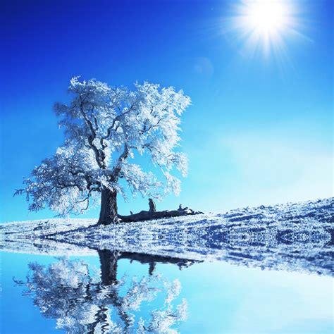 Free Download 2012 Christmas Winter Ipad