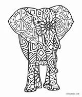 Coloring Elephant Pages Adults Printable sketch template