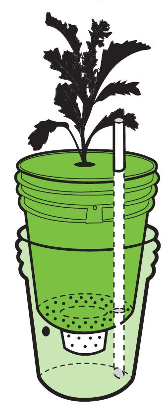 self watering planters diy build a self watering container do it yourself