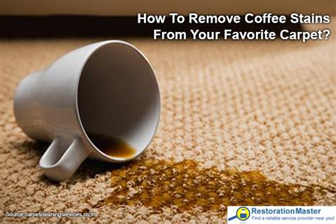 How To Remove Coffee Stains From Your Carpet? Carpet Dyeing Kit Bell Cleaning Elk Grove Ca Empire Pineville Nc Aluminum Stretcher Pole Replace On Stairs With Wood Jungle Python Temperament Britt Rocky Mount Services Central New Jersey