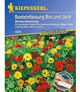 Ameisenplage Im Garten Bekämpfen : baldur garten katalog terrassen und balkonbepflanzung ~ Articles-book.com Haus und Dekorationen