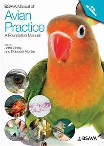 Bsava Manual Of Avian Practice  A Foundation Manual   Dvd