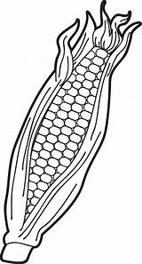 Corn Coloring Clip Clipart Ear Pages Printable Candy Drawing Indian Stalk Thanksgiving Maize Ears Clipartix Cliparts Cob Colouring Fall Template sketch template