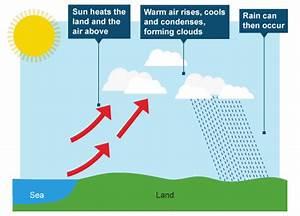 Acid Rain Diagram