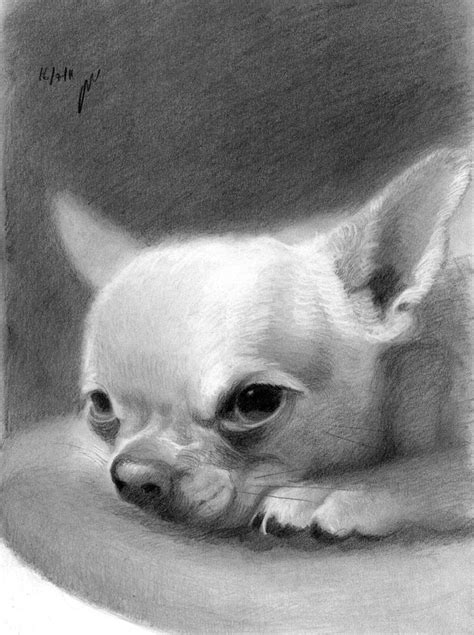 shop roniyoffe roni yoffe original art designes animal