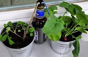 Blumen Bewässern Mit Wollfaden : automatische bew sserung mein naschbalkon ~ Lizthompson.info Haus und Dekorationen