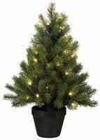 Tannenbaum Im Topf : weihnachtsbaum pink im preisvergleich auf bestellen ~ Frokenaadalensverden.com Haus und Dekorationen