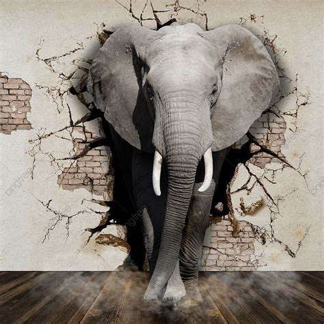 elephant coming    walls wallpapers  walls