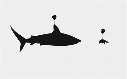 Shark Turtle Funny Desktop Illustration Balloons Hanging