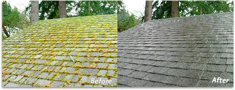 What's Eating Your Roof? Kia Optima Black Roof Metal Companies How Much For A Roofing Tacoma Wa Asbestos Disposal Elastomeric Coating Does It Cost To Replace Your Contractors Bullhead City Az