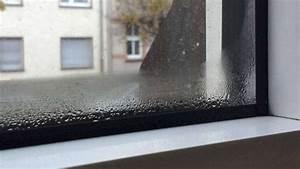 Luftfeuchtigkeit In Der Wohnung : schimmel fahnder j rgen j rges gibt tipps gegen schimmel ~ Lizthompson.info Haus und Dekorationen