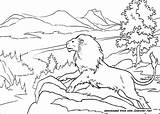 Narnia Aslan Chronicles Lion Coloring Pages Edmund Susan Movies Peter Tree Received Traitor Bow sketch template
