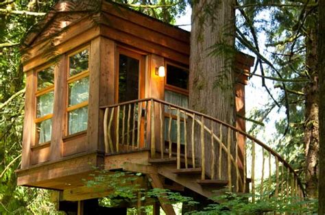 New Book From 'treehouse Masters' Star Explores Tree House