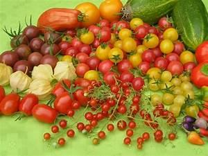 Garten Pur Forum : tomaten threads ~ Lizthompson.info Haus und Dekorationen