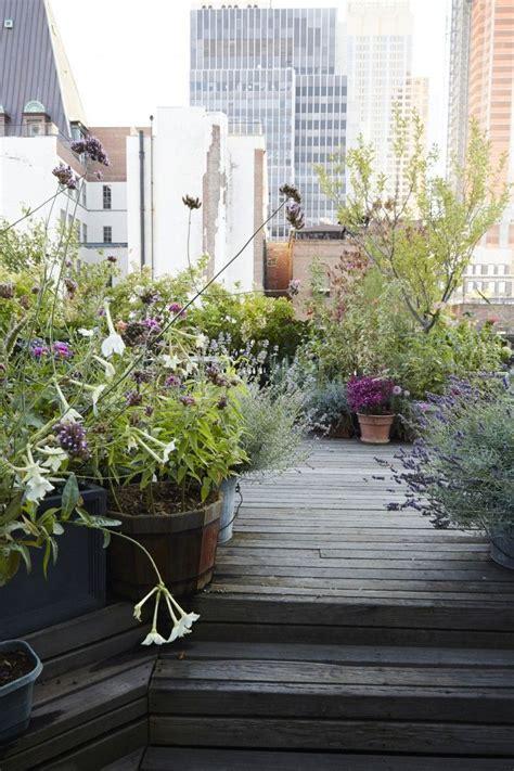 top  ideas  ideaal voor een stadstuintje  pinterest garden ideas terrace  roof