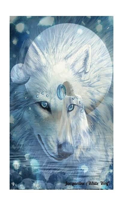 Wolf Friend Spirit Jacqueline Dowe Created Wild