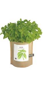 potting shed creations buy potting shed creations basil garden in a bag at well