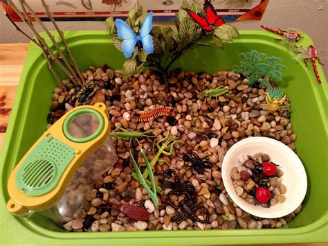 insect sensory tub amp activities preschool amp kindergarten 552 | maxresdefault