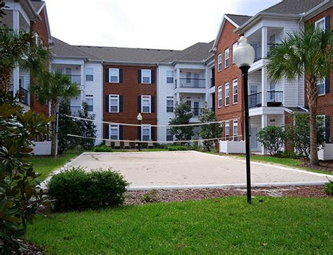 1 Bedroom Apartments Near Usf by 1 Bedroom Apartments Near Of South Florida