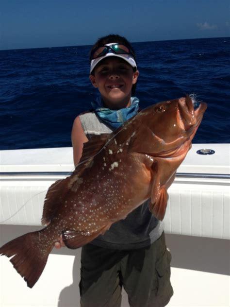 grouper florida fishing keys catches weekly delphfishing