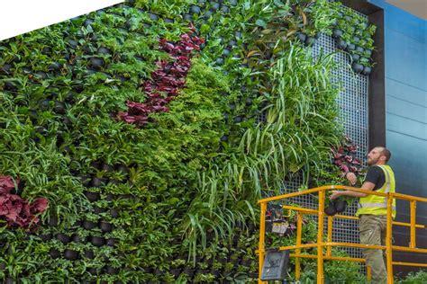 Vertical Garden Maintenance by Vertical Garden Sydney Melbourne Brisbane Garden