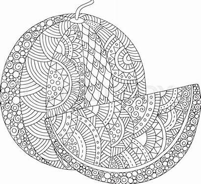 Watermelon Coloring Adult Stress Zentangle Anti Printable