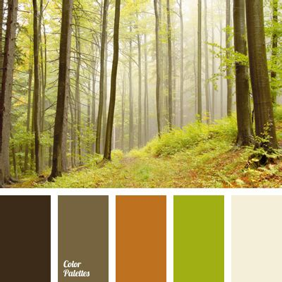 Forest Greenery Color  Color Palette Ideas
