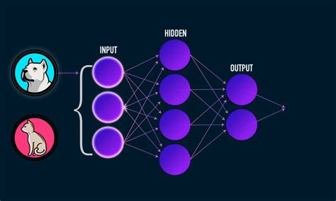 introduction  deep learning  data science