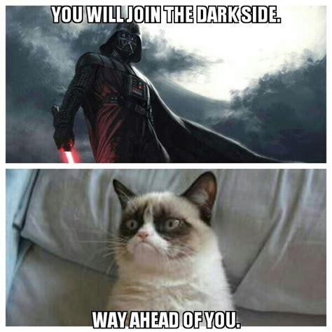 9 Reasons Star Wars Needs Grumpy Cat