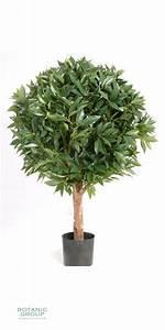 Sträucher Auf Stamm : kunstbaum kunstpflanze lorbeerkugel lorbeer kugel auf stamm pflanzenversand ~ Michelbontemps.com Haus und Dekorationen