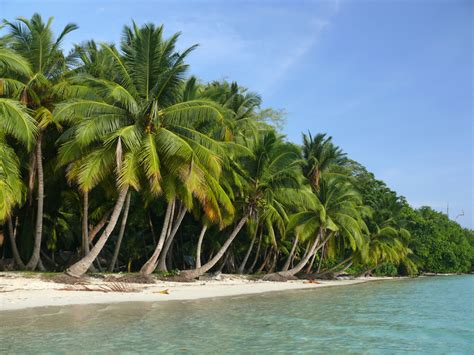 andaman nicobar islands places island beaches visit tour neil tourism india place packages